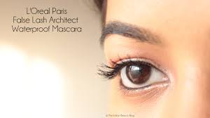 al paris lash architect 4d mascara