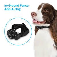 Dog Electric Fences Walmart Com