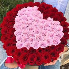 صور جميلة انستقرام زهور أحلي 12 خلفية ورود جميلة