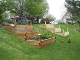 raised bed vegetable garden on a slope