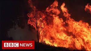 Australia fires: Climate change ...