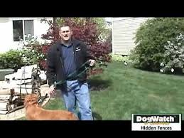 Dogwatch Hidden Fences Of Columbus Training Youtube