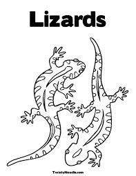 Lizard Pattern Dieren Tekenen Dieren