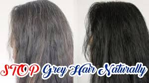 pre graying of hair naturally