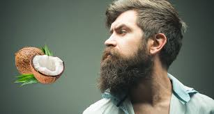 how to use coconut oil for your beard
