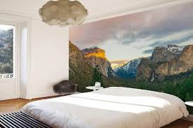 Yosemite National Park Wall Mural Eazywallz