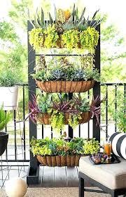apartment balcony vegetable garden