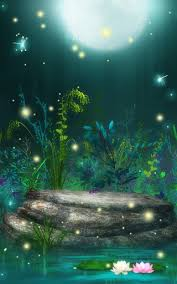 fireflies live wallpaper for android