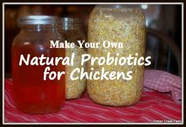 natural probiotics for ens