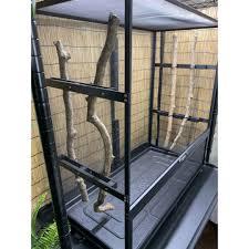 screen chameleon cages chameleon academy
