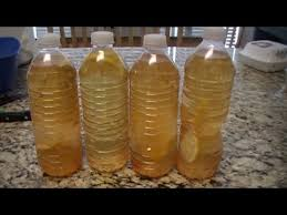 master cleanse 10 day challenge
