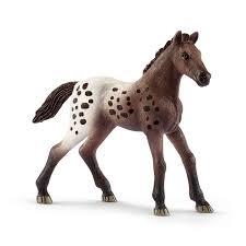 appaloosa foal 13862 horse club