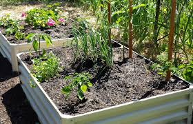 raised bed mr stacky