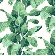 wallpe tropical leaf print