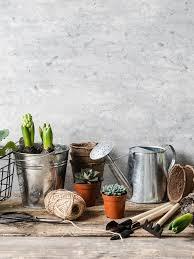 zinc bucket and garden tools