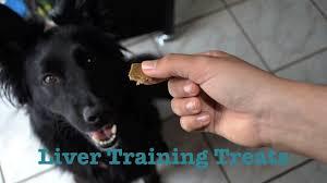 homemade dog treats en liver