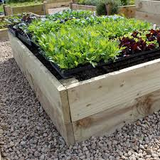how to build a school vegetable garden