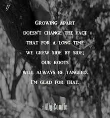 growing apart quotes about friendship growing apart quotes