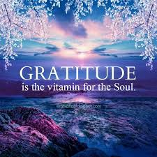 gratitude is the vitamin for the soul gratitude quotes