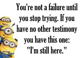 minion memes and quotes to enjoy