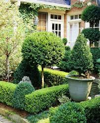 dreamy and classic boxwood gardens