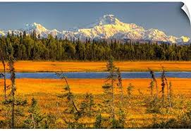 Amazon Com Canvas On Demand Mt Mckinley At Sunset Denali National Park Southcentral Alaska Wall Decal 48 X32 Home Kitchen