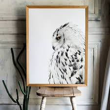 Nordic White Owl Feather Canvas Wall Art Home Decor Tiptophomedecor