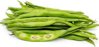 english runner beans information