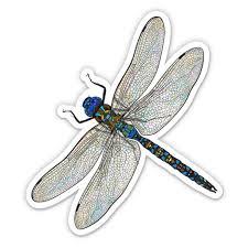 Dragonfly Realistic Pretty Insect 3 Vinyl Sticker For Car Laptop I Pad Phone Helmet Hard Hat Waterproof Decal Walmart Com Walmart Com