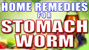home remes for stomach worms ii प ट
