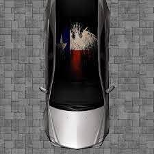 Amazon Com Sign Factory R52 Texas Flag Eagle Roof Wrap Decal Decals Wraps Vinyl Wraps Art Poster Image Carbon Hood Car Truck Fiber Hood Automotive