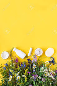 Natural Skincare. Natural Cosmetics And Organic Herbs And Flowers ...