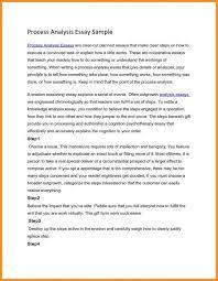 process essay the essay writing process