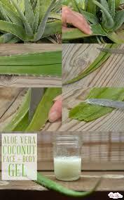 aloe vera coconut face body gel