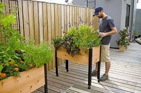 herb garden designs with plant lists