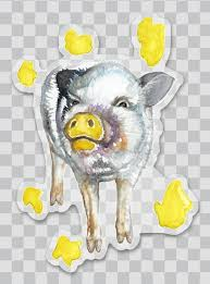 Mini Pig Decals Stickers Car Decals And Bumper Stickers American Mini Pig Online Store