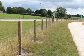 Timber Post Rail Strained Wire Fencing Fencing Projects Categories By Mulligan Fencing