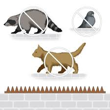 Fence And Wall Spikes Anti Bird 115 Spikes 4 Panels Bird Animal Control Outdoor