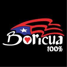 Puerto Rico Car Decal Sticker Boricua 100 With Flag 96 Ebay