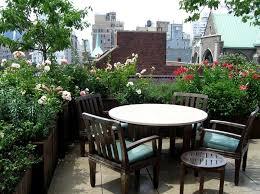 best terrace roof garden plants you