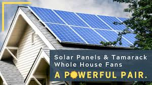 solar panels tamarack whole house
