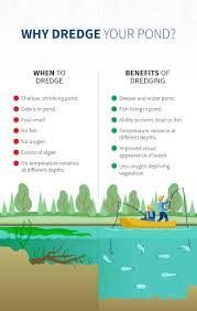 infographic should i dredge my pond