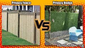 Privacy Fence Vs Privacy Hedge Versusbattle Com