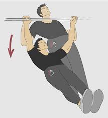 33 bodyweight back exercises at
