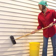 how to clean vinyl siding like a pro