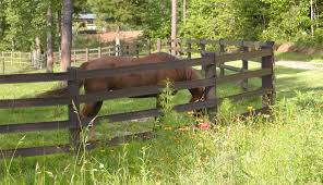 Horse Fence Installation Centaur Htp Board Vinyl
