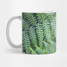 Ferns Fern Mug Teepublic