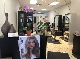 dina and tifa hair studio in chicago