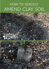 how to quickly amend clay soil