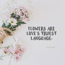 flowers are love s truest language ⠀ quotes about flowers